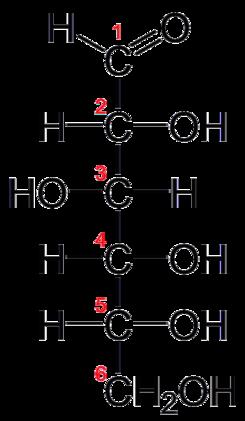Quiz Carbohidratos Química Carbohidratos Propiedades