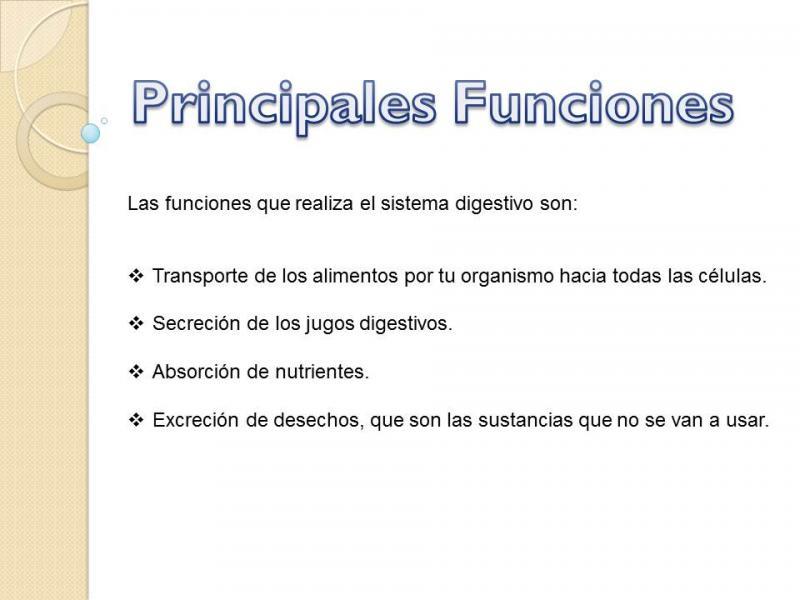 Presentación Sistema Digestivo. tercer grado educaciÓn primari...