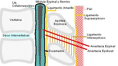 Corrientes Interferenciales Fisioterapia Epub