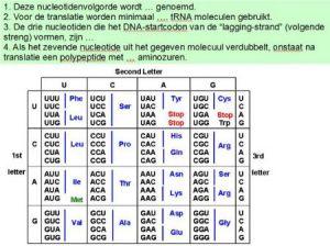 genetischer code