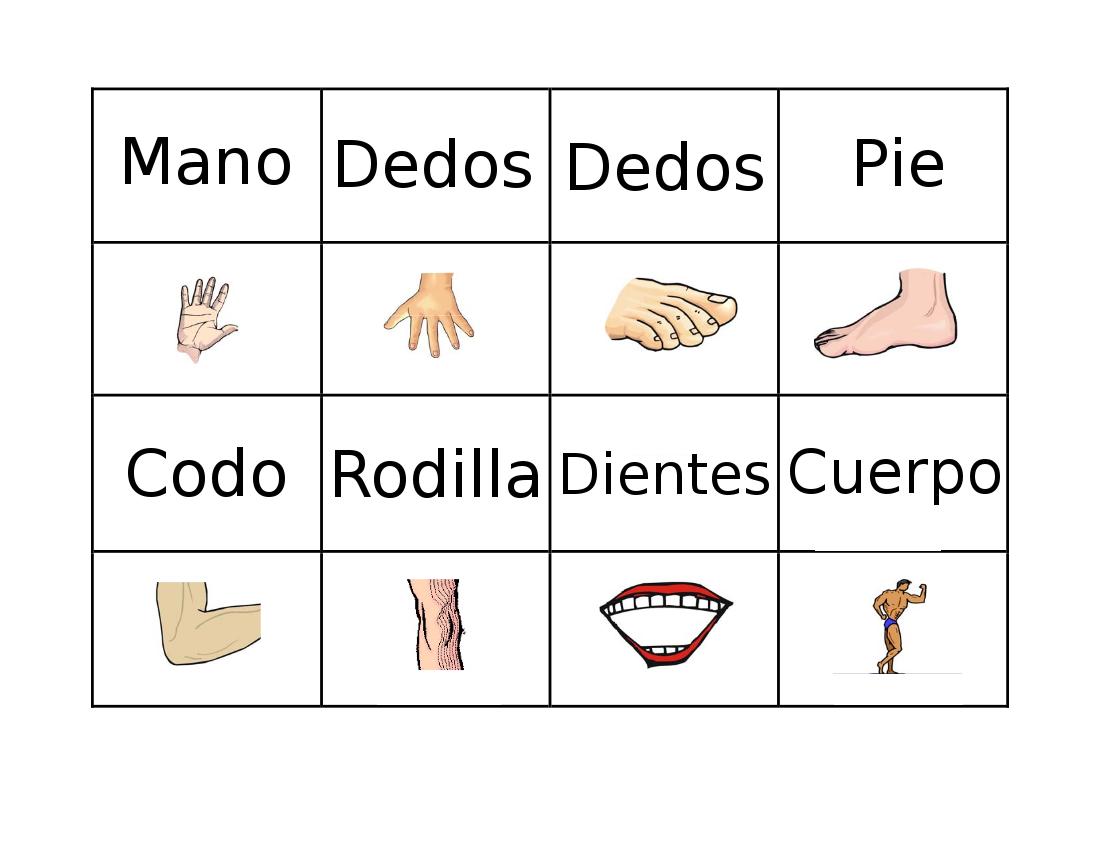 Presentación El cuerpo Humano. biología. Lorcys Del Carmen Rom...